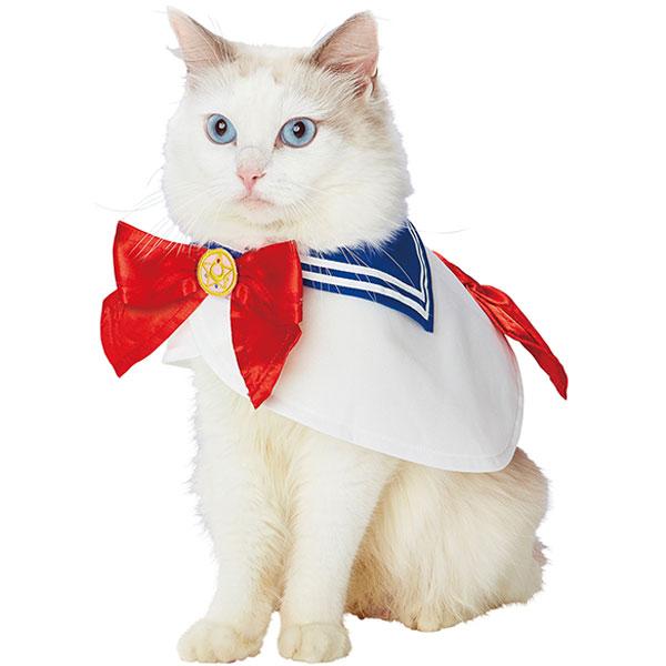 ペティオキャラペティ美少女戦士セーラームーンなりきりケープペット用の着用例