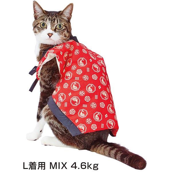 ペティオPetio猫小町ちゃんちゃんこ唐草は寒い時季におすすめワンチャンのちゃんちゃんこ