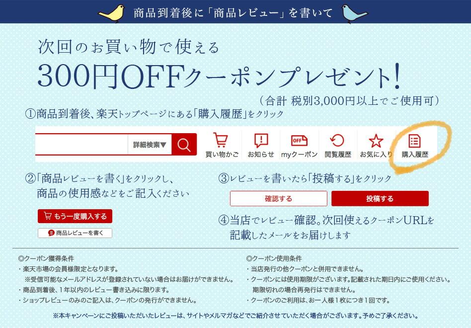 300円OFFクーポンプレゼント