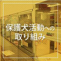 ポッター紹介