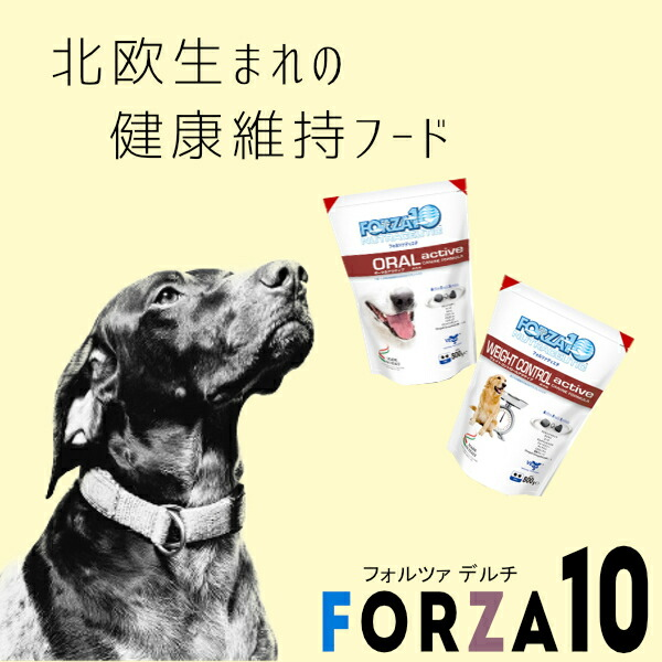フォルツァ10