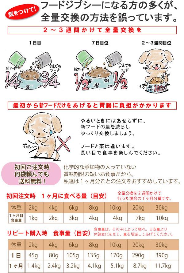 ドッグフード変更時の注意点と食事量目安