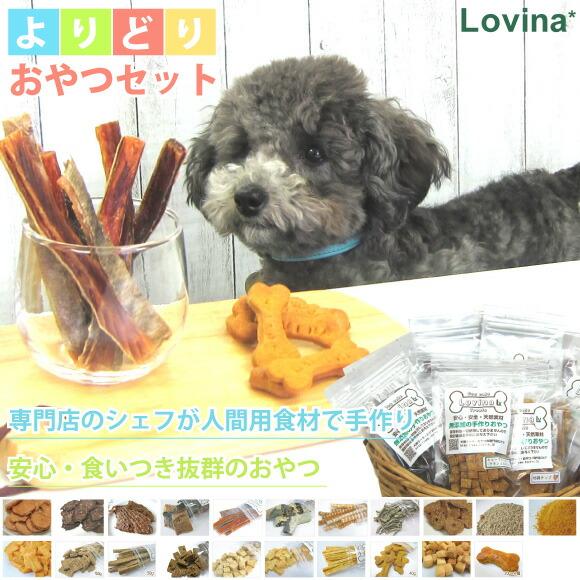 ロビナのシェフ手作り、カロリー・食材・硬さで選べる犬用無添加おやつ