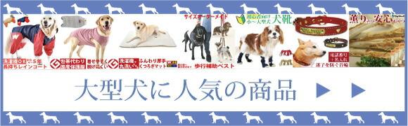 小型犬から大型犬までとダックス・コーギーサイズもあり