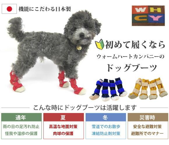 犬靴初心者に履きやすいドッグブーツ