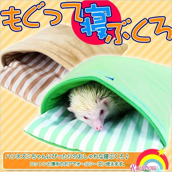 寝床 ハリネズミ