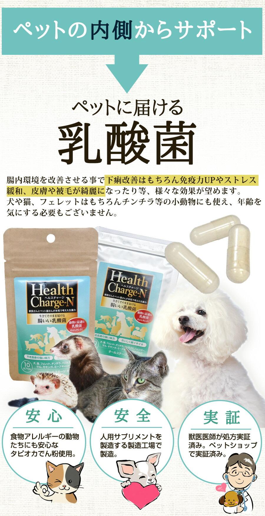 ペットに届く乳酸菌