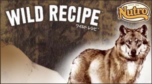 ワイルドレシピ