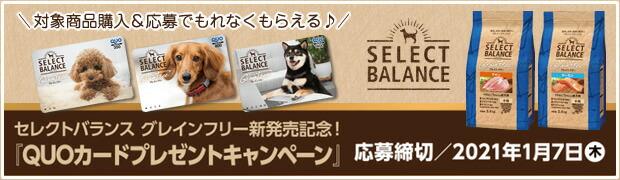 セレクトバランス対象商品購入&応募でQUOカードプレゼントキャンペーン