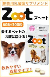 Zoot ズ〜ット