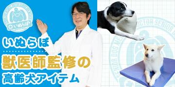 いぬらぼ 獣医監修の高齢犬アイテム