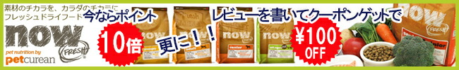 ナウフレッシュ対象商品100円OFFクーポン