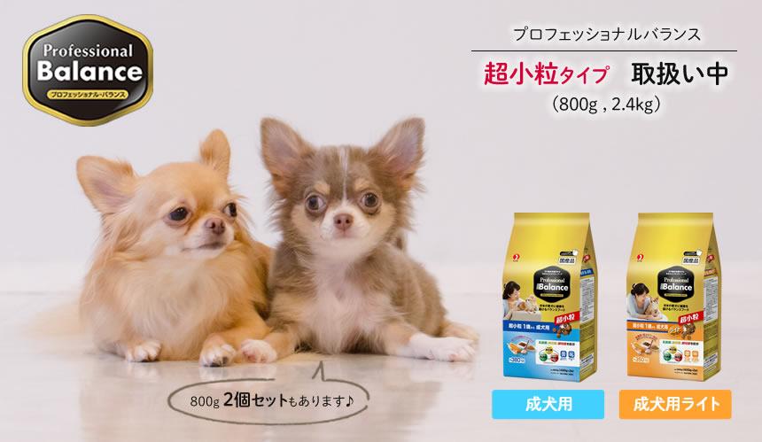 プロフェッショナルバランス 超小粒タイプ 絶賛取り扱い中!【成犬・ライト 800g・2.4kg】
