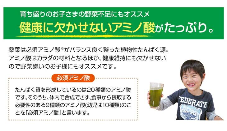 ファイテン 桑葉青汁発芽玄米プラス(phiten)