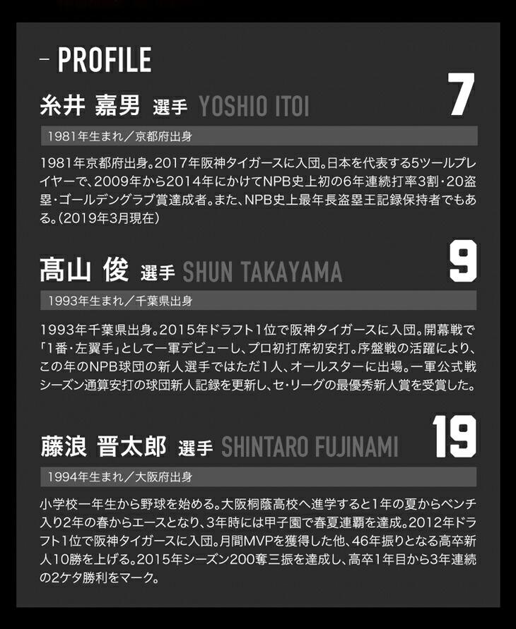 ファイテン RAKUWAバンド メタックス(2枚入) 阪神タイガースモデル
