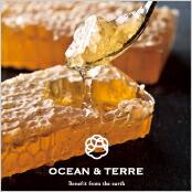 -OCEAN & TERRE-巣蜜