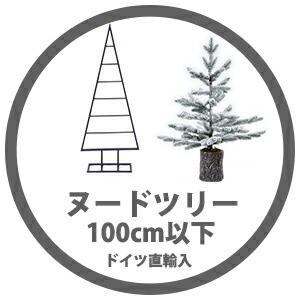 ヌードツリー(100cm以下)
