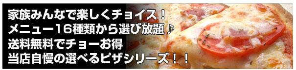【送料無料】14種類から選び放題!ピザ5枚セット2,980円