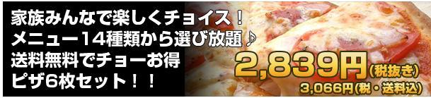 【送料無料】14種類から選び放題!ピザ6枚セット2,980円