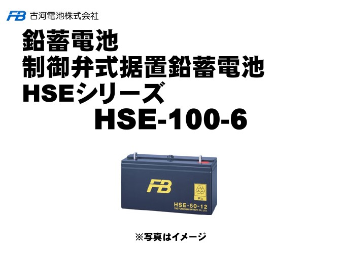 【受注生産品】HSE100-6【古河電池】制御弁式据置鉛蓄電池(バッテリー) 6V 100Ah 1