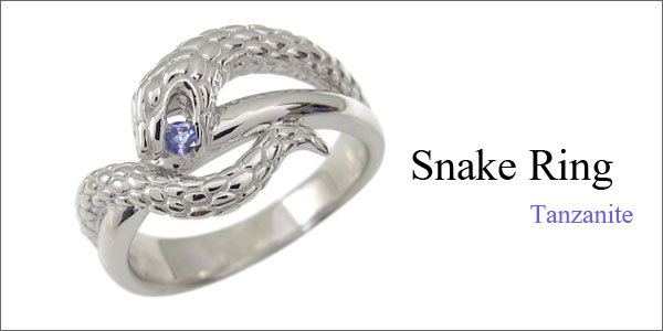 スネーク,蛇,ヘビ