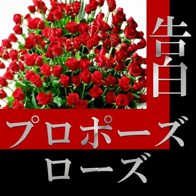 https://image.rakuten.co.jp/plumeria/cabinet/04646170/ppr/pprit1.jpg