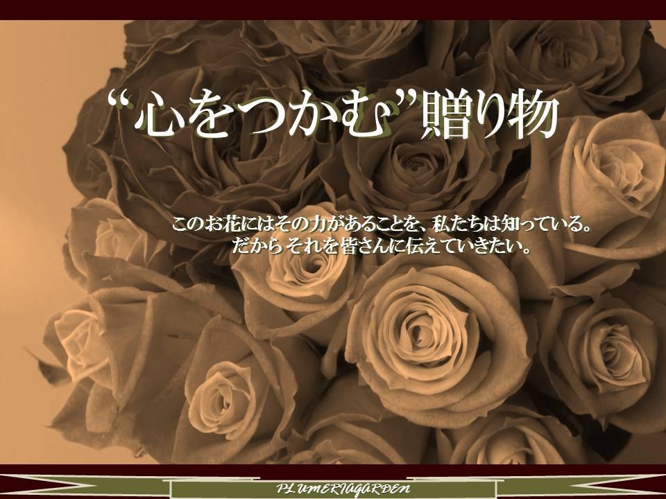 https://image.rakuten.co.jp/plumeria/cabinet/rose_bouquet_s/prbn2.jpg