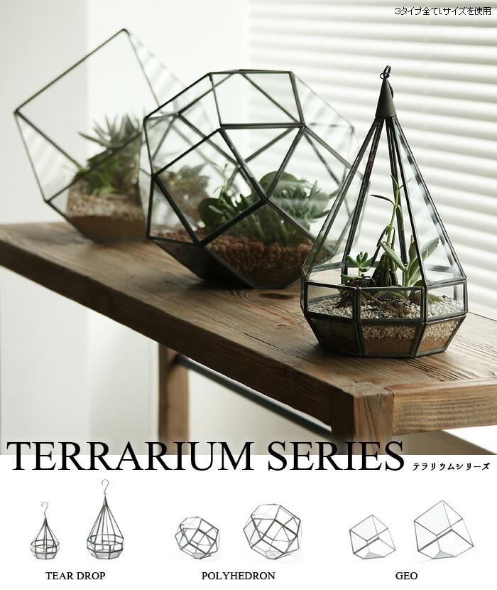 ショーケース ディスプレイケース ティアドロップ ポリへドロン ジオ テラリウム Tear Drop Polyhedron Geo Terrarium 植物 ガラス グリーン ガーデニング インテリア ケース ガラスケース プランター アンティーク プレゼント
