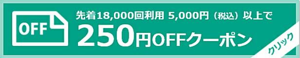 5000円以上250円