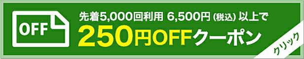 6500円以上250円