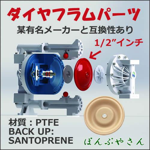 1/2 PTFE-SANTOPRENE