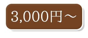 3000〜