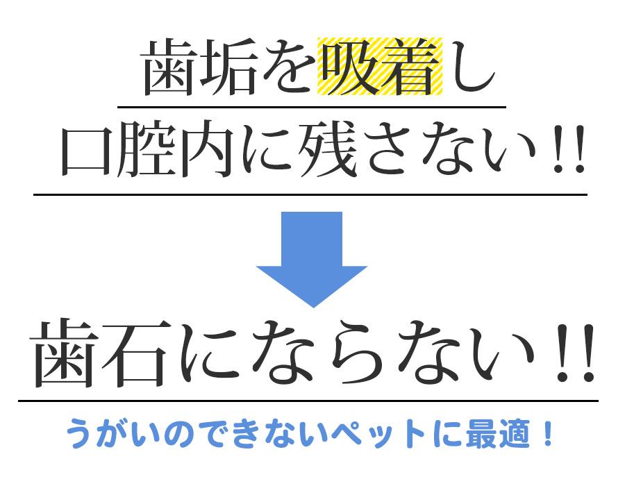 メイン4-2-2
