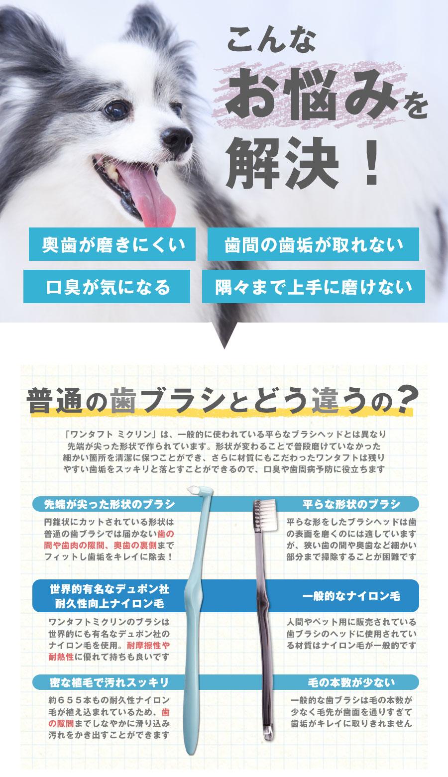 歯垢の磨き残しに便利な歯ブラシ