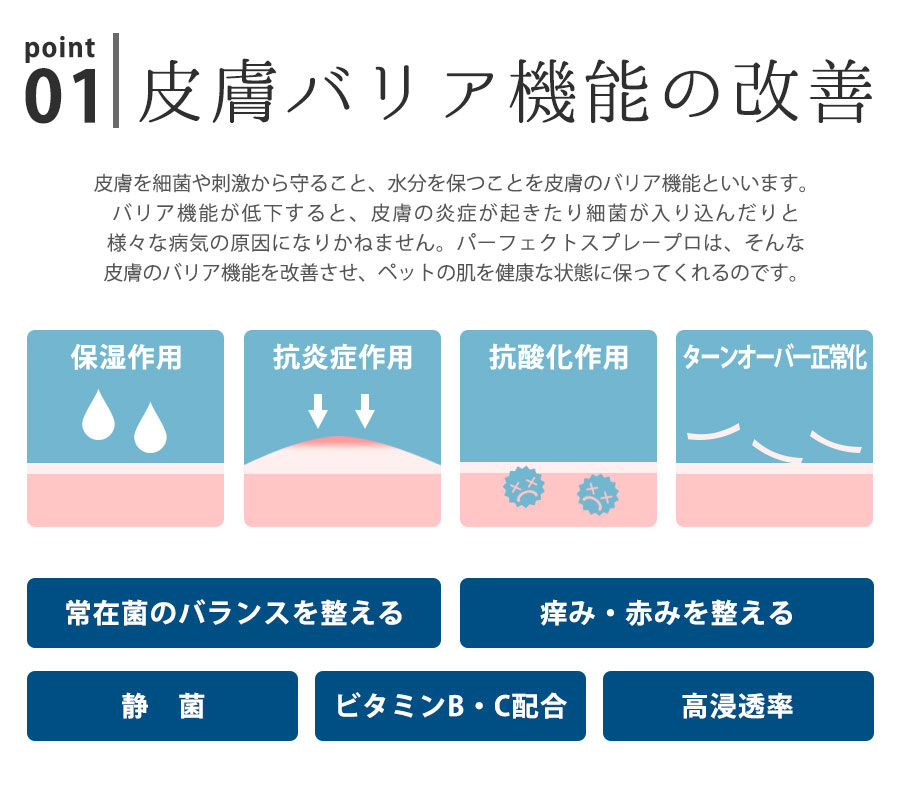 皮膚バリア機能を改善