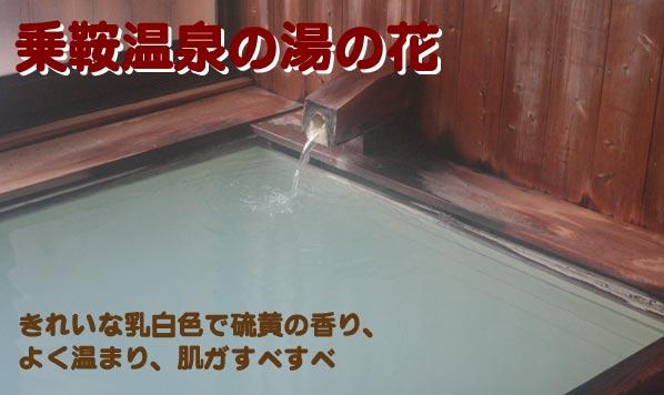 乗鞍温泉湯の花