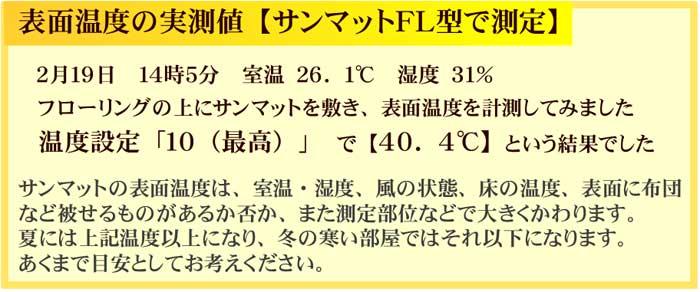 表面温度の実測値