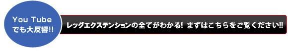 ライフフィットネスレッグエクステンション(シグネチャーシリーズ)