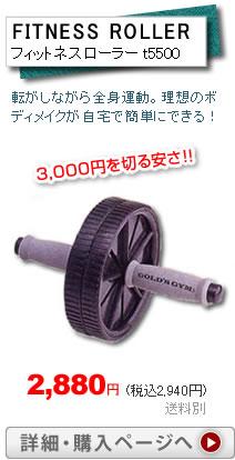 フィットネスローラー t5500税込2,940円