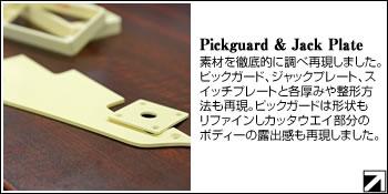 pickguard