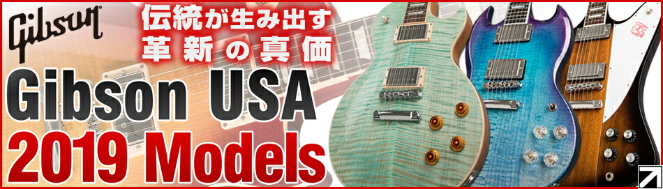 Fender AmeOri