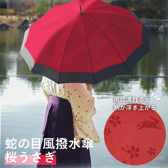傘 雪うさぎ