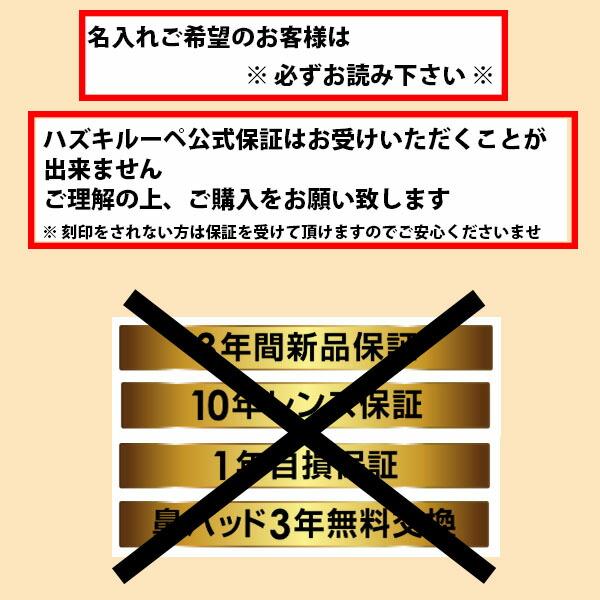 Hazuki ハズキルーペ ラージ 拡大率 1.85倍 1.6倍 1.32倍 選べる10色 長時間使用しても疲れにくい メガネ型 拡大鏡 踏んでも壊れない 様々なシーンで使える