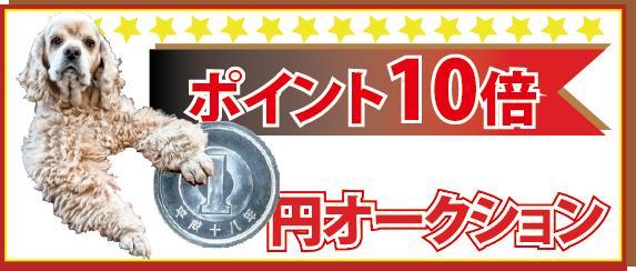 ポイント10倍!1円オークション