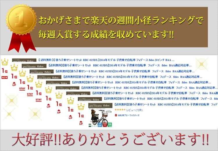 fides-ranking-banner.jpg