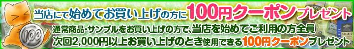 初回ご利用100円クーポンプレゼント