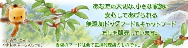 安心ペットフードのぷーちゃんイメージ