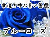 ブルーローズ 青い薔薇