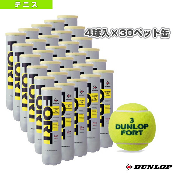 テニスボール 2球×30缶 ダンロップ ケース販売 (FORT) 1箱 箱売り (60球) 〔送料無料〕 テニスボール DFDYL2 フォート