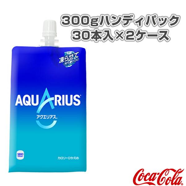 【送料込み価格】アクエリアス 300gハンディパック/30本入×2ケース(41223)